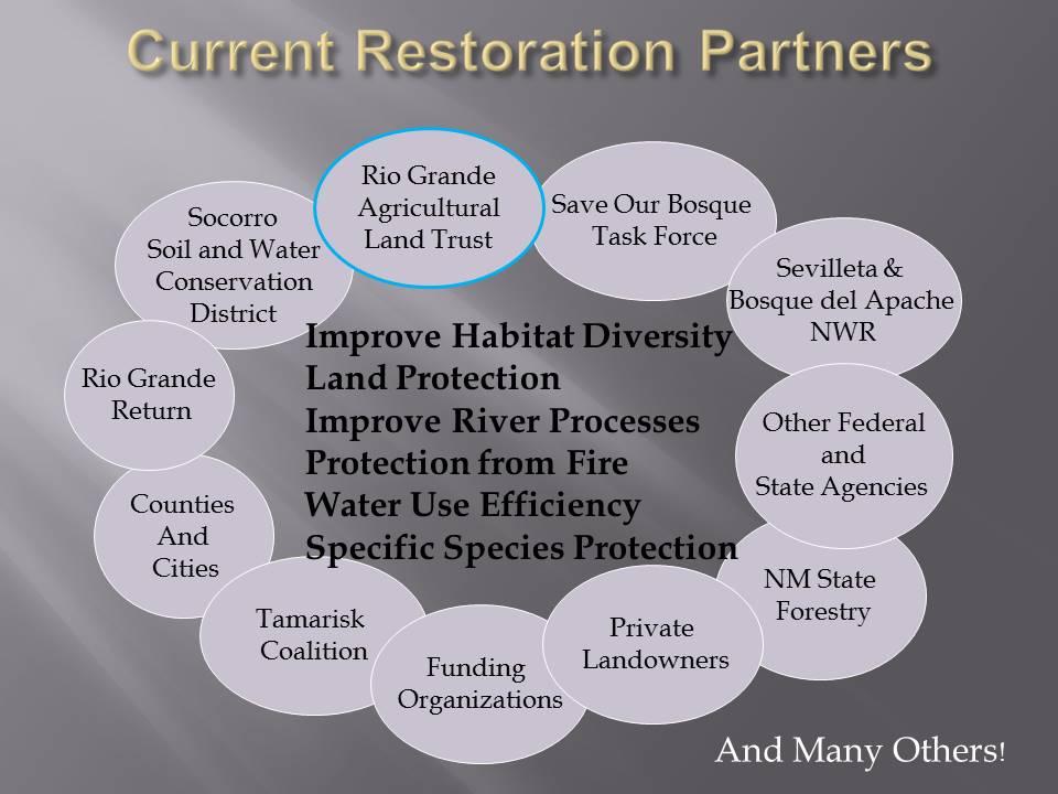 RGALT presentation SOBTF partnership slide